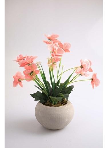 Kibrithane Çiçek Yapay Çiçek Beton Saksı Mini Pembe Kumaş Orkide Kc00200809 Renkli
